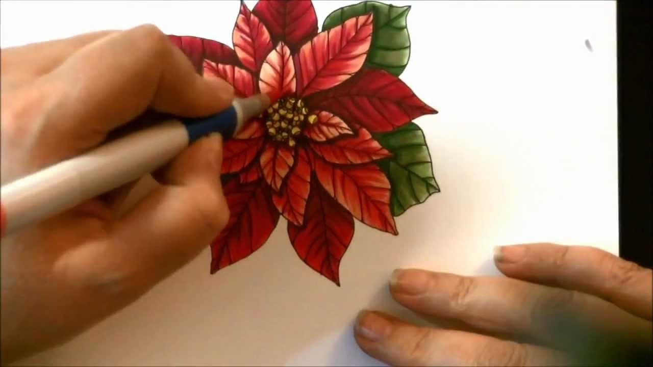 poinsettia drawing and copics youtube