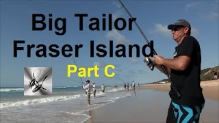 How to Catch and Cook Tailor on Fraser Island | The Hook and The Cook | Part C