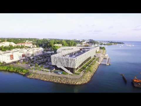 Amazing Island #guadeloupe