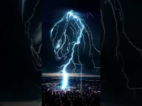 The Predator: Lightning Bolt