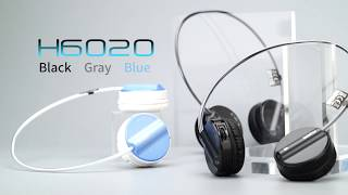 RAPOO Bluetooth Wireless Headset-H6020