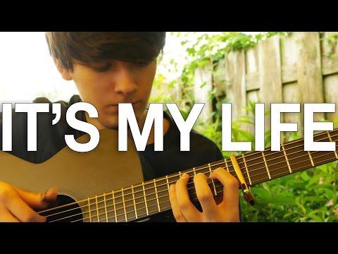It&39;s My Life - Bon Jovi - Fingerstyle Guitar Cover