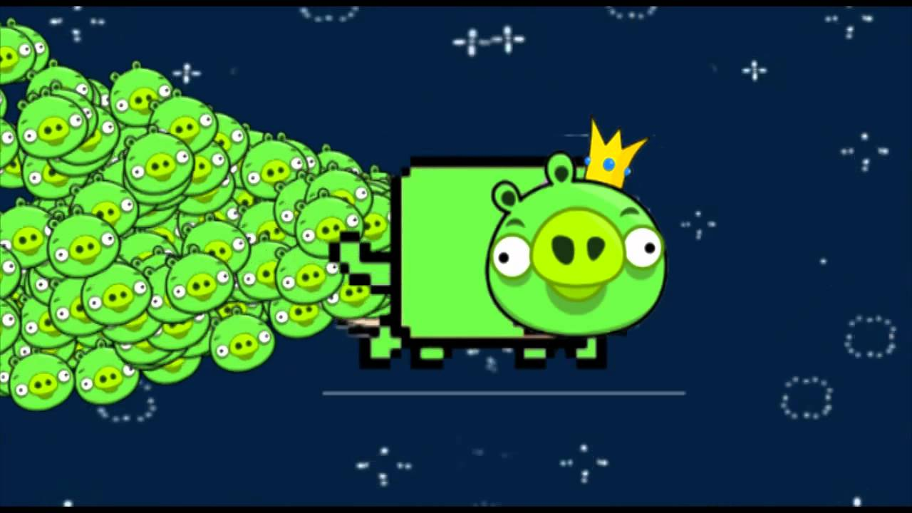 nyan cat pigs angry birds   youtube