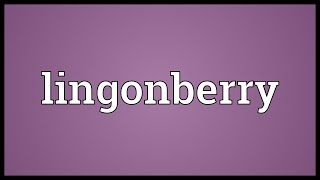 Lingonberry Meaning
