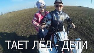 ГРИБЫ - ТАЕТ ЛЁД (ДЕТСКАЯ ВЕРСИЯ)