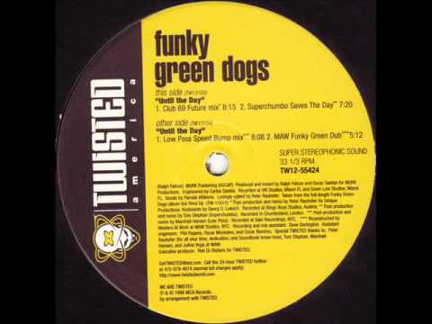 Funky Green Dogs Until The Day