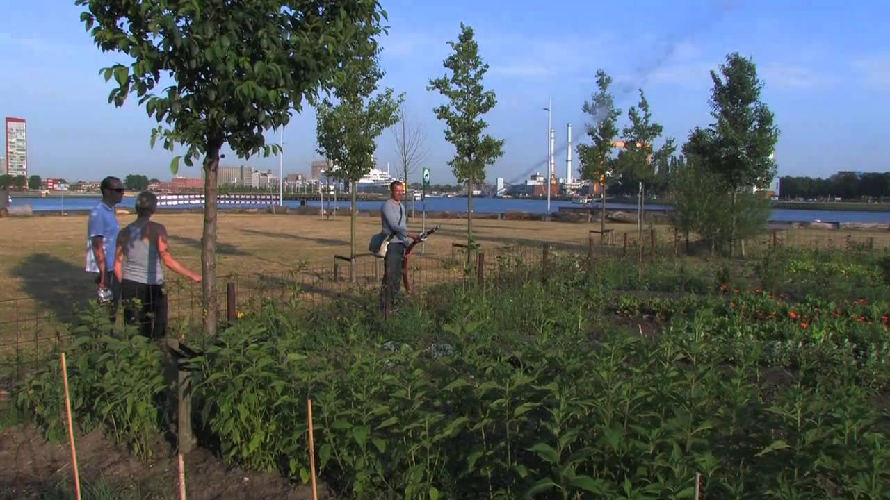 tuin aan de maas genomineerd voor de van der leeuwprijs