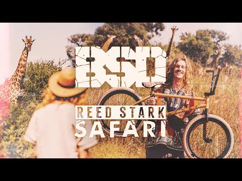 BSD BMX - Reed Stark - SAFARI