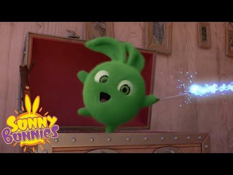 Солнечные зайчики - Солнечная магия | Мультфильмы для детей | WildBrain