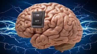 The ON/OFF Switch Inside Your Brain DISCOVERED?!