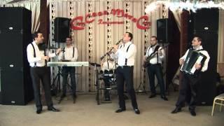 Formatia Claudiu Alecu & Sile de la Cernica - Sarba Bulgareasca ( Instrumentala )