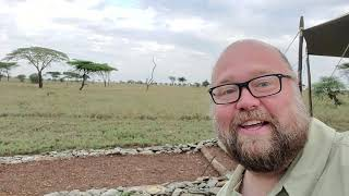 Evening Excitement in the Serengeti! Cape Buffalo & Lions Outside our Tent