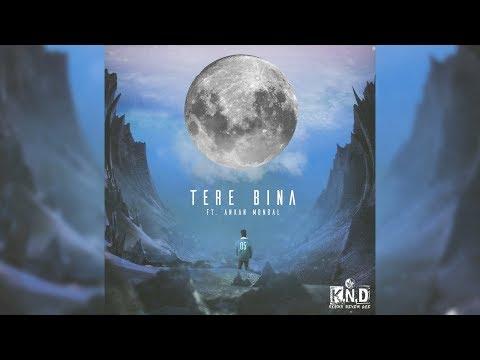 KING ND | Tere Bina Feat. Ankan Mondal (Official Audio) | Tellingbeatzz | Desi Hip Hop 2017