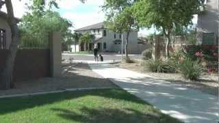 Arizona's Yugoslavian Candy - European Doberman Pinscher - Dog Training - Trained Dogs