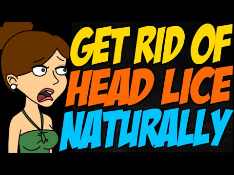 Best Way To Get Rid Of Head Lice Naturally