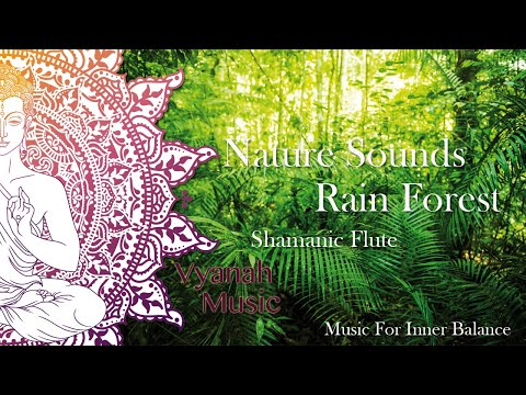 Nature Sounds Tropical Rain Forest - Relaxing Music