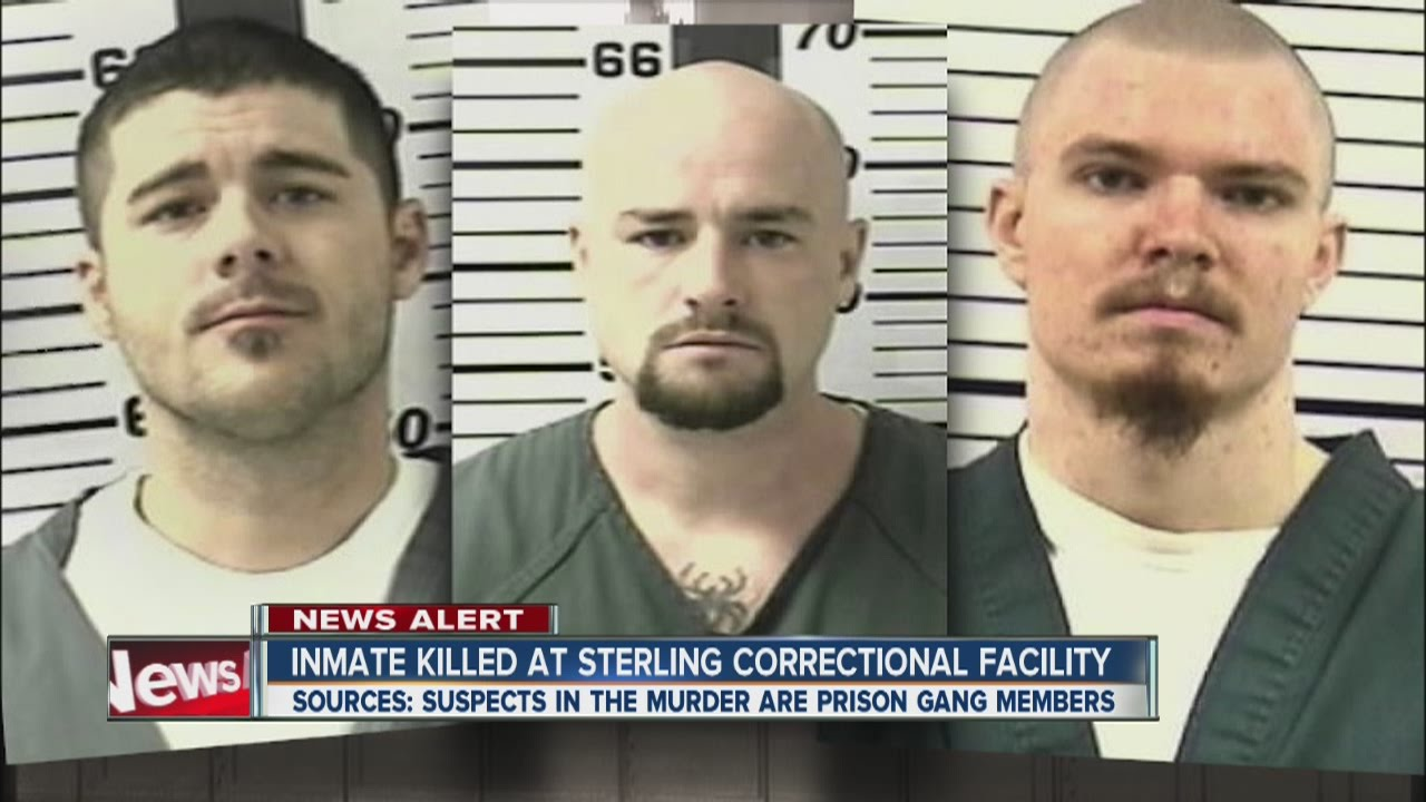 correctional facilities and gangs essay Containing contraband 06/03/2014  mainly created by the tie between street and prison gangs  in airports are now being used in some correctional facilities.