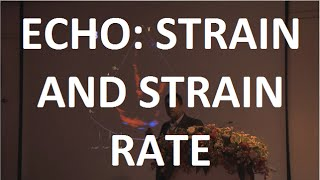 Echocardiography: Strain and Strain Rate by Dr Charit Bhograj