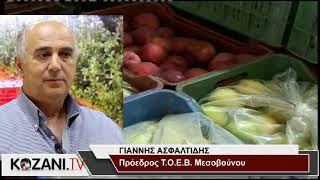 Μειωμένη κατά 80% η παραγωγή μήλων σε Πύργους και Μεσόβουνο