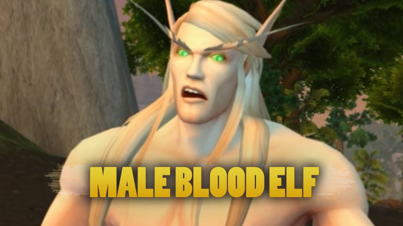 World Of Warcraft Warlords Of Draenor Updated Male Blood Elf