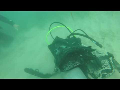 NAUI Dive Master - Stress Skills Bailout/Ditch & Recover