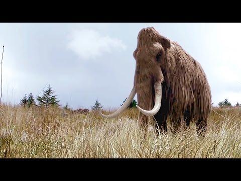DOKU: Wiedergeburt des Mammuts - DNA ermöglicht Erzeugung eines Klons   Dokumentation 2015 Deutsch