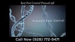 Best Pest Control Prescott AZ