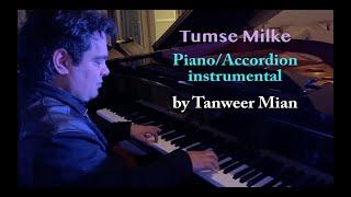 Tumse Milke | Instrumental | Tanweer Mian | piano accordion