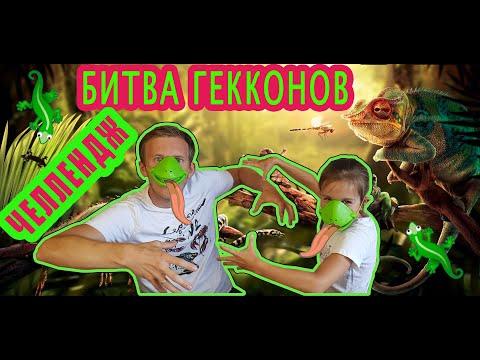 Челлендж Битва ГЕККОНОВ