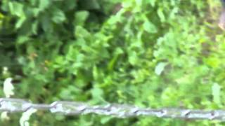 Водосток с крыши с помощью цепи(Использование вместо водосточной трубы обычной стальной оцинкованной цепи. Технология монтажа: карабином..., 2014-04-22T09:47:18.000Z)