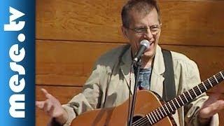Huzella Péter: A kobra szobra (dal, koncert részlet) | MESE TV
