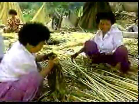 Семена конопли - SibSeeds - семена конопли почтой