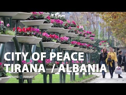 City Of Peace Tirana / Albania
