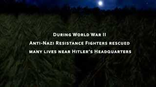 The Brave Fighters: WWII Anti-Nazi Resistance Stories near Hitler