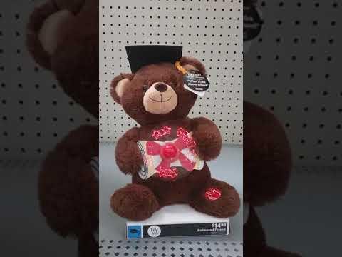 Dan Dee singing message fan graduation bear