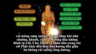 Tụng Kinh Vô Lượng Thọ  ( Trọn Bộ ) - Thích Trí Thoát ( Có Chữ )