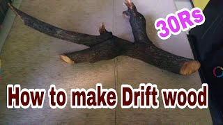 How to make Driftwood | DIY Driftwood | Driftwood kaise banaye HINDI