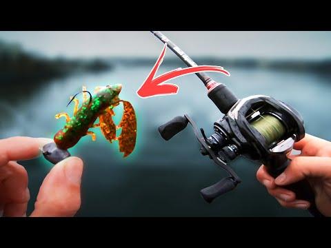 Urban Fishing With CREATURE BAITS 🦂 (ft. Tobias Fränstam)