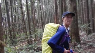 2016-08-06_高島田出屯野生台山-04(森林步道)
