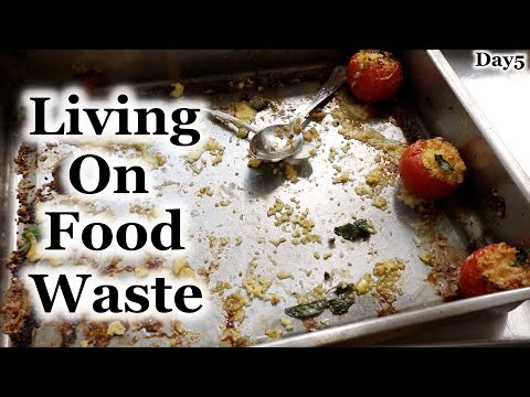 Living on Food Waste - Day5