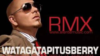 watagatapitusberry - Pitbull, Sensato, Black Point, Lil Jon, El Cata