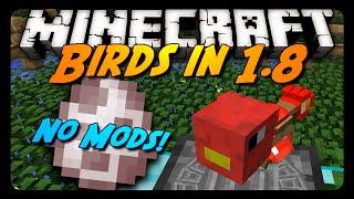 Minecraft: BIRDS & FLYING MACHINES IN 1.8! (No Mods)
