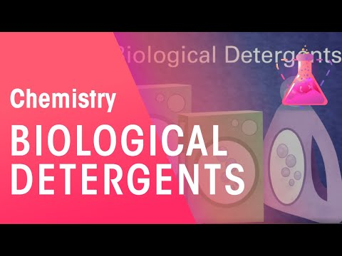 Biological Detergents | Chemistry for All | The Fuse School