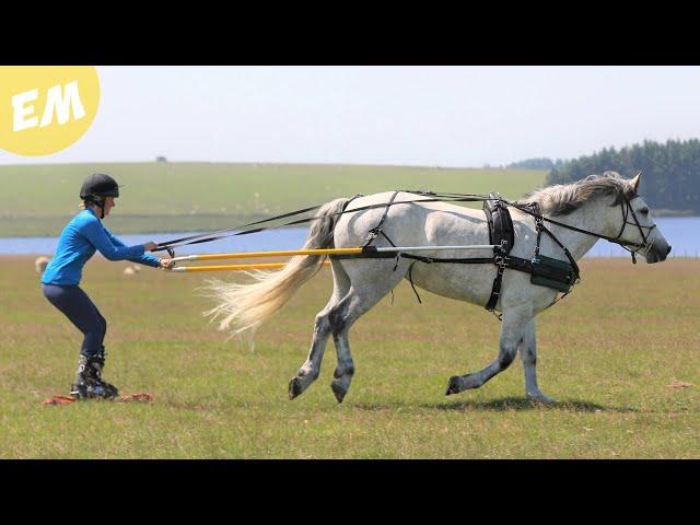 Moorland Equestrian Grass Skiing | Vlog