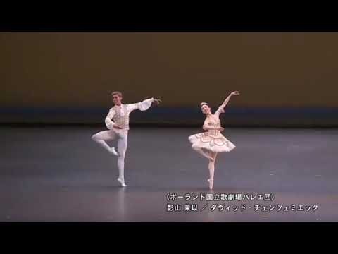 Gala performance at New National Theatre Tokyo / アステラス 2017 フィナーレ
