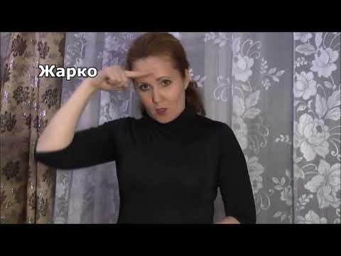 Уроки русского жестового