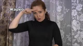 Уроки русского жестового языка