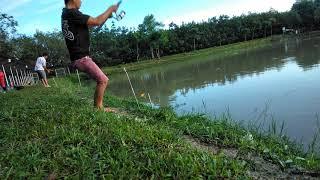 Câu Cá Chim Sáng Sớm Đầy Kịch Tính/ câu cá giải trí / nghiện câu cá