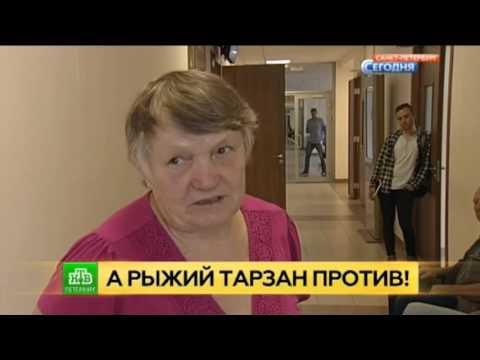 Новости Петродворцового района Санкт-Петербурга