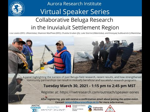 Virtual Speaker Series: Collaborative Beluga Research in the ISR (March 30, 2021)